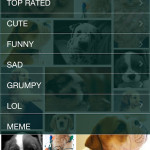 CatSnap DogSnap cat photos dog photos iphone and android apps store google play-22
