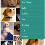 CatSnap DogSnap cat photos dog photos iphone and android apps store google play-46